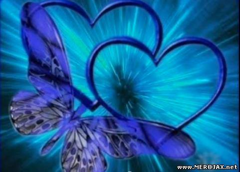Heart and Butterflies Screensaver